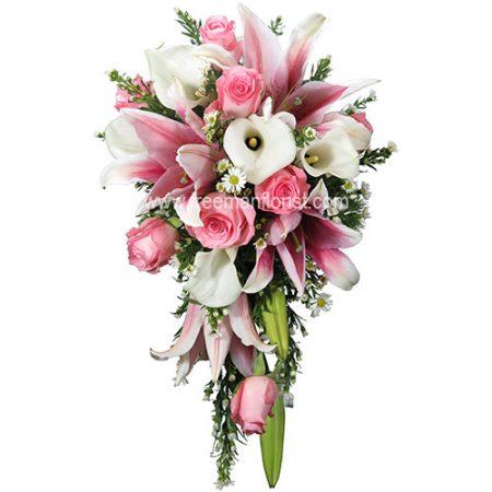 A Pink Romance (HB101)